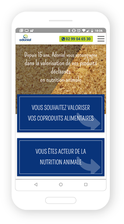 Version mobile, responsive Adonial - Site Internet