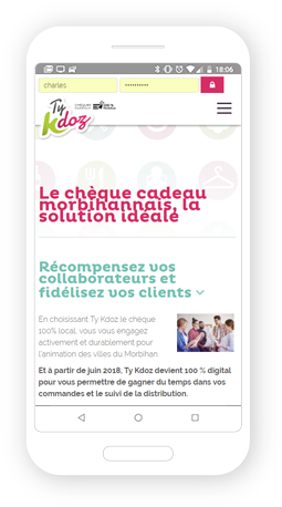 Version mobile, responsive Ty Kdoz - Site Internet
