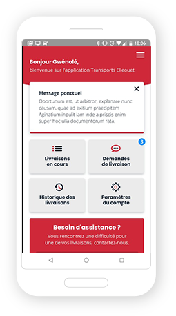 Version mobile, responsive Transports Elleouet - Application mobile