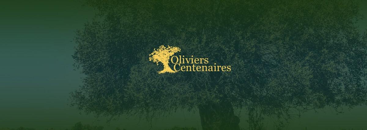 Présentation Oliviers Centenaires - Site Internet - Bretagne, Morbihan, Vannes (56)