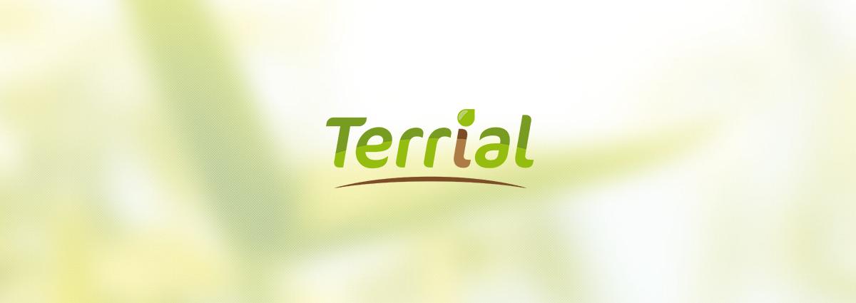 Présentation Terrial - Application mobile - Bretagne, Morbihan, Vannes (56)
