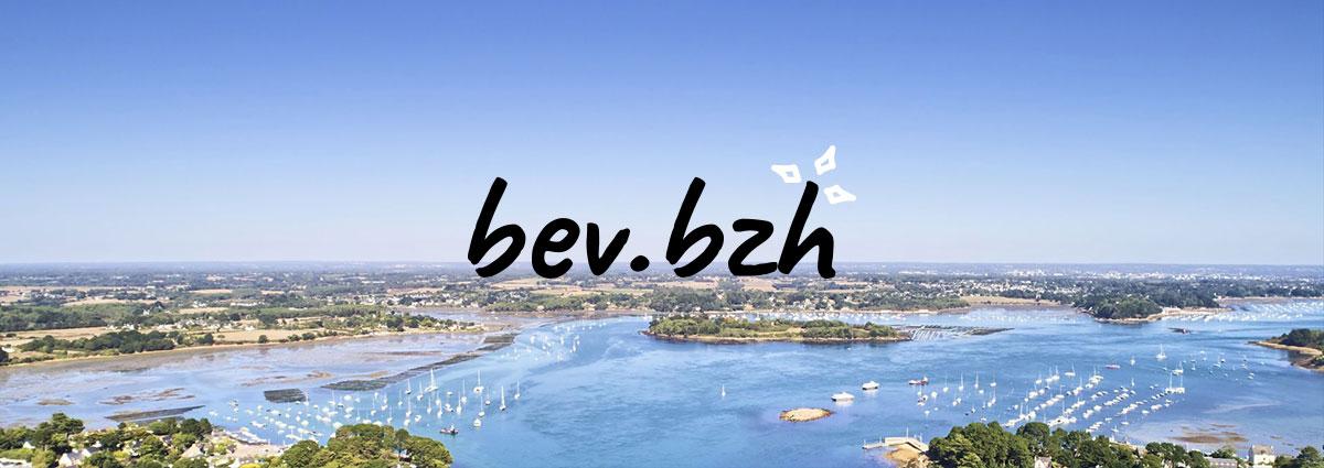 Présentation BEV - Site Internet - Bretagne, Morbihan, Vannes (56)
