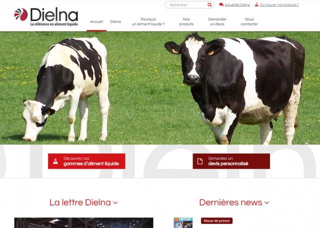 Page d'accueil du site Dielna à Vannes dans le Morbihan 56
